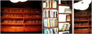 knygų lentyna2