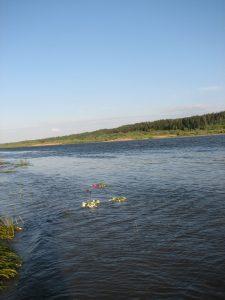 Joninių vainikai plaukia Nemunu, 2008