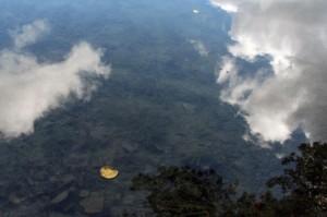 Dangaus vanduo. Ričardo Šileikos nuotrauka