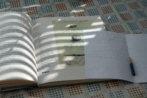 Rytas. Ričardo Šileikos nuotrauka