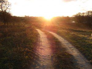 """Ataudai / vienas kito įdrėkusioj žemėj / prigijo  (""""Užkalbėjimas. Kelias. Lemtis"""")"""