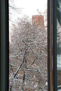 Pro drevės langą. Ričardo Šileikos nuotrauka