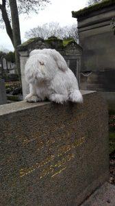 Paryžius. Père Lachaise kapinių gyventojas. Neringos Dangvydės nuotrauka